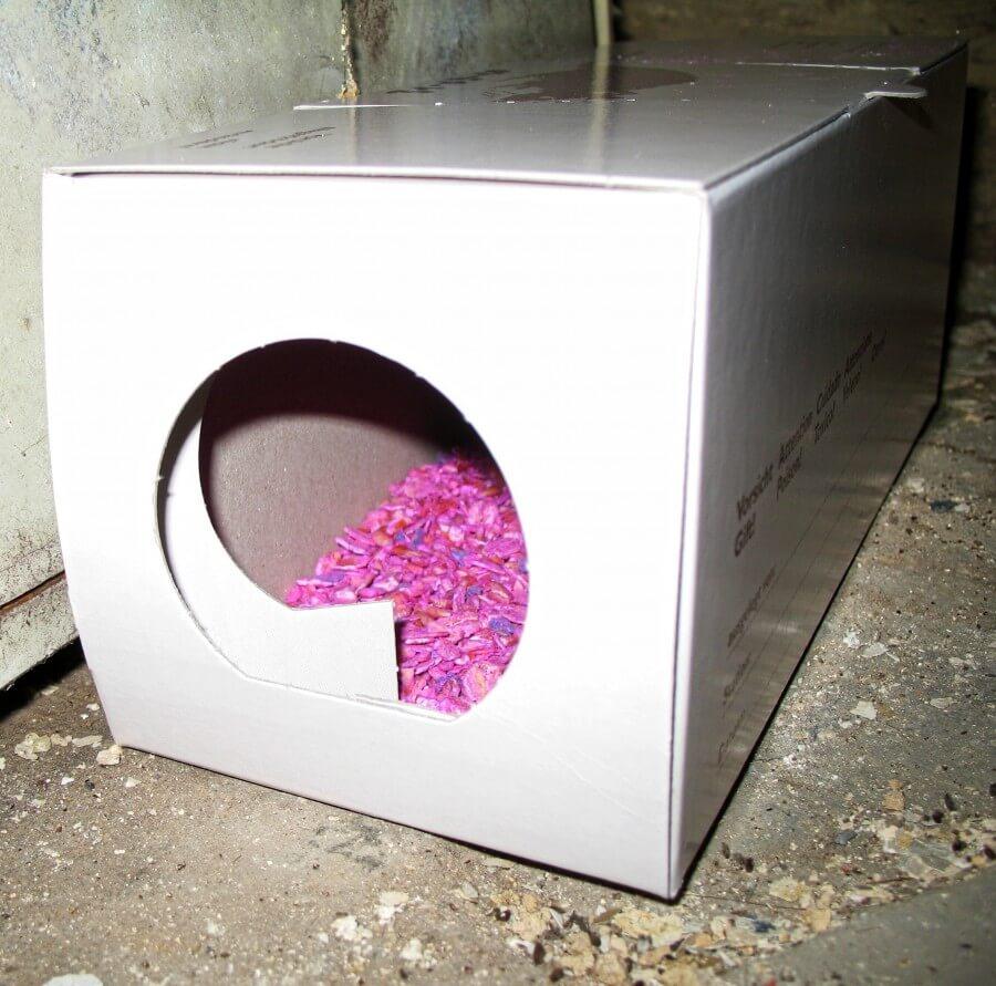 Moderne Rattenbekämpfung mit Ratten Köderbox.