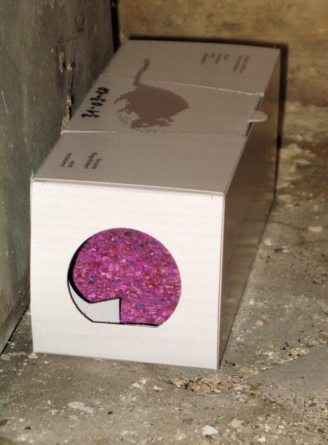 Rattenköderboxen sind wirkungsvolle Mittel bei der Rattenbekämpfung.